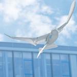 Erster künstlicher Vogel entwickelt